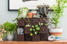 DIY Plant Drawers by DIY in PDXWith a little help from wood sealant and some cute but optional knobs, your humble Moppe can be a home for a family of happy plants.