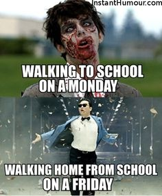 35 School Memes That Are Extremely Hilarious And Relatable - School Funny - School Funny meme - - 35 School Memes That Are Extremely Hilarious And Relatable Funny Shit, The Funny, Funny Jokes, Funny Work, Funny Stuff, Funny Minion, Memes Humor, Humor Quotes, Infp