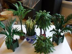 A selection of 1/12th scale plants