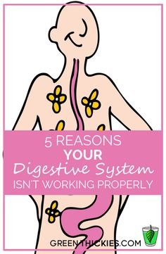 5 reasons your digestive system isn't working properly.  Why is it that those with digestive issues can't often fully fix them and have to follow a very strict diet or suffer the painful consequences?  My digestion improved massively once I followed these 5 steps.