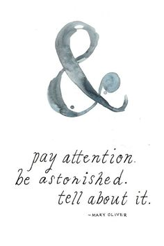Mary Oliver put it: Instructions for living a life: Pay attention. Be astonished. Tell About It.