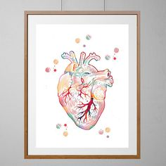 The Heart watercolor print the human heart poster medical art anatomy art heart illustration anatomical heart print surgery science art gift - Education Human Figure Drawing, Figure Drawing Reference, Anatomy Art, Anatomy Drawing, Human Anatomy, Heart Anatomy, Heart Illustration, Landscape Illustration, Heart Poster