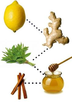 sore throat remedy - lemon, mint, ginger, cinnamon & honey