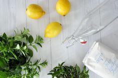 Rezept • Selbstgemachter Zitronen-Melissen Saft Vegetables, Food, Juice, Homemade, Drinking, Recipes, Meal, Eten, Vegetable Recipes