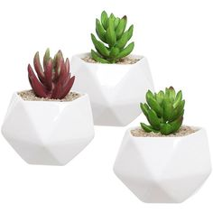 Amazon.com: Set of 3 White Ceramic Succulent Plant Pots / Geometric... ($15) ❤ liked on Polyvore featuring home, outdoors, outdoor decor, filler, plants, white ceramic planter, white planter, white ceramic pot, garden planters and garden patio decor
