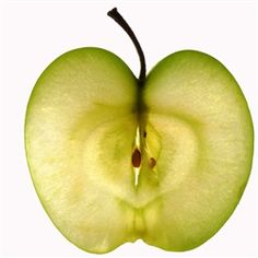 a scientific view of an apple cross-section | food photography from palladio at Modern Mural