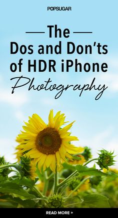 Since the 4S, each iPhone camera is equipped with a really cool HDR setting that can dramatically improve your photos.