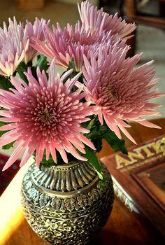 Хризантемы..perfectly pink:):) in a beautiful vase:):)