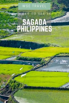 Sagada, Philippines is the city to go if you're looking for adventure & discovery. Unique, geographically beautiful and full of history: the contrast with the capital of Philippines (Manila) is what makes this city a quite interesting place to visit and discover. What to do | Sagada Philippines Travel | Sagada Philippines guide | #sagada #philippines #travel