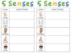 Classroom Freebies: 5 Senses Record Sheet