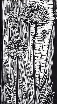 Buy Alpine Armeria, Linocut by Anna Robertson on Artfinder. Discover thousands of other original paintings, prints, sculptures and photography from independent artists.