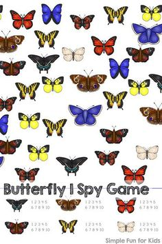 Practice counting, visual discrimination, visual scanning, 1:1 correspondence, number recognition and more with this printable Butterfly I Spy Game for preschoolers and kindergartners.