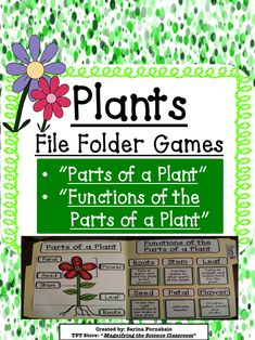 File Folder Game! I would separate these two  into different lessons for students with special needs.