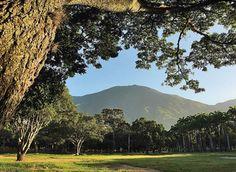 Parque del Este, Caracas.