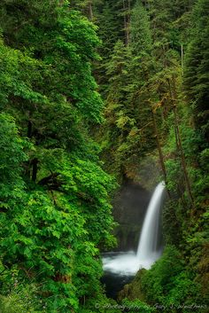 Metlako Falls, Oregon