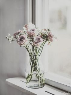 dusty pink roses from vintagepiken: 36