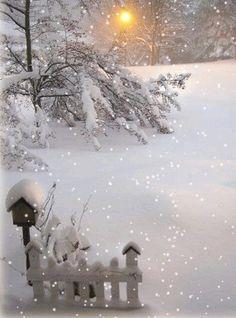 neige blog (4) // A walk through a Winter's Garden.....
