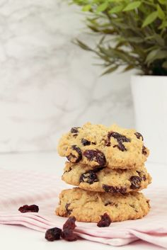 Cranberry Haferflocken Kekse sind eine leckere Nascherei für Zwischendurch. Ich verrate dir mein liebstes Rezept für diese Cookies!