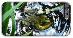 Frog In Soundwaves phone cover by Rowena Throckmorton. Protect their new iPhone or Galaxy with an impact-resistant, slim-profile, hard-shell case. Perfect gift for a nature bug!