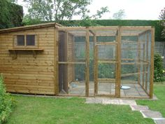 Duck Enclosure Ideas | This Aviary is used for a variety of birds, but mainly pigeons and