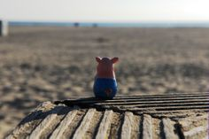 Gustav is longing for the sea