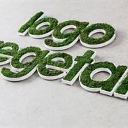 Gestabiliseerde groene muren: Moss Fashion
