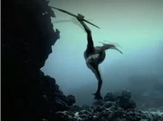 Mermaids new evidence 2013: The Discovery Channel is airing a follow-up to its controversial Mermaids series on May 27 several times, starting at 10 p.m.