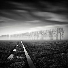 Long Exposure Foggy Tree Photography by Pierre Pellegrini. Swiss photographer Pierre Pellegrini shoots some phenomenal long-exposure photographs of trees. Texture Photography, Tree Photography, Landscape Photography, Photography Tips, Exposure Photography, Landscape Art, Landscape Paintings, Sad Paintings, Tree Drawing For Kids