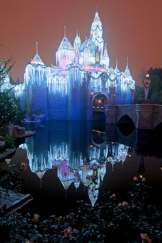 Sleeping Beauty's Winter Castle ( Disneyland ) in Mild Fog ,  Anaheim California via flickr
