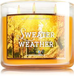 Love seeing Bath and Body Works FALL candles!  TOO bad there's not a store near us....   Boo  :(           Bet this smells great.