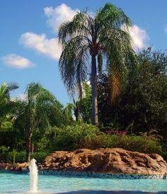 Discovery Cove (Orlando,Florida)