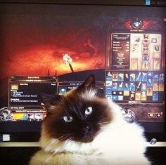 """""""Oh, you wanted to play your lil' computer game? That's nice."""" 