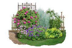 Beet in Feierlaune Rosen Beet, Green Life, Front Yard Landscaping, Zeppelin, Garden Wedding, Wedding Soup, Beets, Landscape Design, Outdoor Structures
