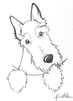 """Scottie Dog Sketch...this really catches """"the look"""" a Scottie can give you."""