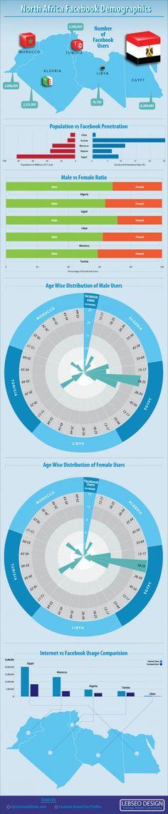 Internet Users Demographics in Egypt, Tunisia, Libya, Algeria and Morocco.