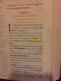 The Talbert Report: Psalm 3