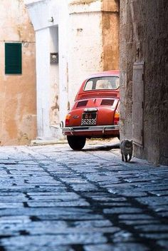 Street in Italia Fiat 500 Fiat 500 Vintage, Vintage Cars, Retro Cars, Purple Home, Cute Cars, Small Cars, Italian Style, Italy Travel, Dream Cars