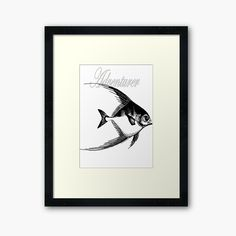 'Adventurer The Fish' Framed Print by Beer-Bones Centerpiece Decorations, Adventurer, Off Colour, Custom Boxes, Box Frames, Framed Art Prints, Bones, Print Design, Fish