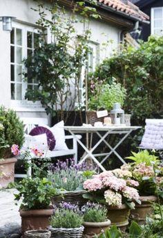Terrasse inspiration – 20 skønne eksempler her - Garten Dekoration Diy Garden, Dream Garden, Garden Projects, Garden Pots, Garden Landscaping, Potted Garden, Back Gardens, Small Gardens, Outdoor Gardens
