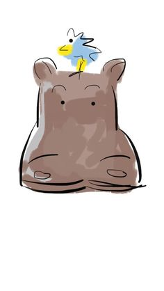 Hippopotamus illustration by Karla Rimaitis