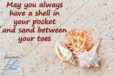 Always have a shell in your pocket.    #Sandbridge #SandbridgeBeach #VirginiaBeach #BeachQuotes