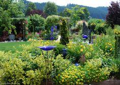 I dream from summer in my garden.... www.facebook.com/DerGruneDaumenTheGreenThumb?fref=ts