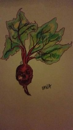 Skull beet draw plant red green