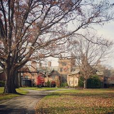 The Stan Hywet house view from the front. Taken in Akron,  OH. The house was built in the early 1900's in a Tudor revival style. Follow my instagram: @bourgeoisiebaby #photography #architecture #oldhomes #nature #Tudorhomes #autumn #trees