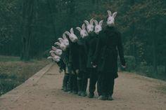 why are animal masks so creepy? Animal Masks, Animal Heads, Matt Hardy, Rabbit Head, Rabbit Gif, Silly Rabbit, Creepy Images, Bunny Mask, Bizarre