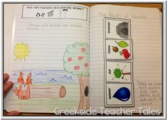 Awesome 2nd grade interactive notebook