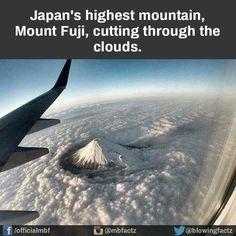 Sobre o monte Fuji. Love Photos, Cool Pictures, Funny Pictures, Funny Pics, Monte Fuji Japon, Japon Tokyo, Fuji Mountain, Mont Fuji, Photos Voyages