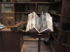 Detalle Librería-Anticuaria