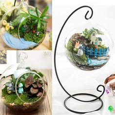 12cm Round Ball Hanging Decor Glass Flower Vase Plant Terrarium Container Gift