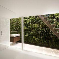 Vertical Gardening...inside! Love it